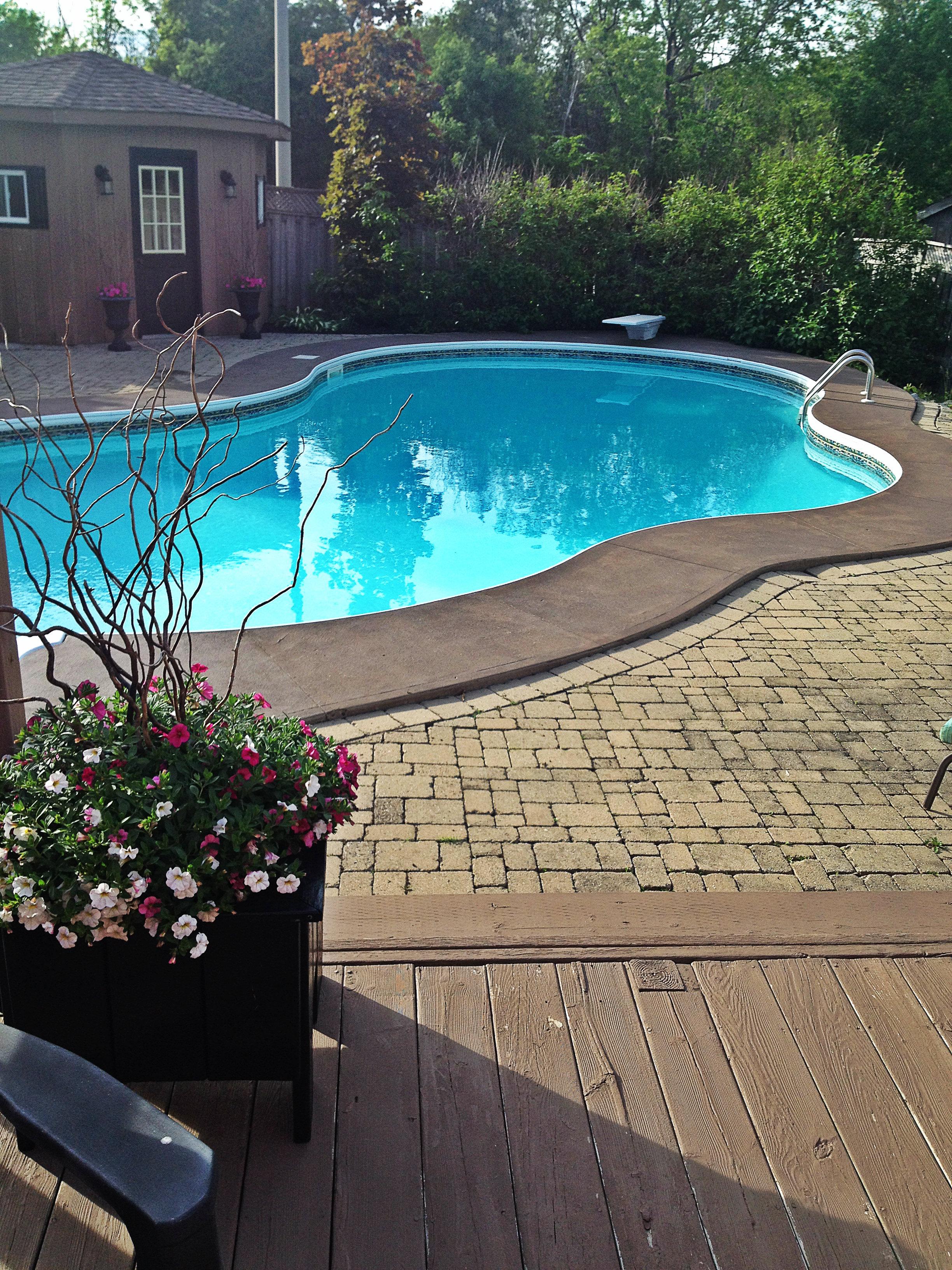 Backyard Pool | Tall Girl Meets World