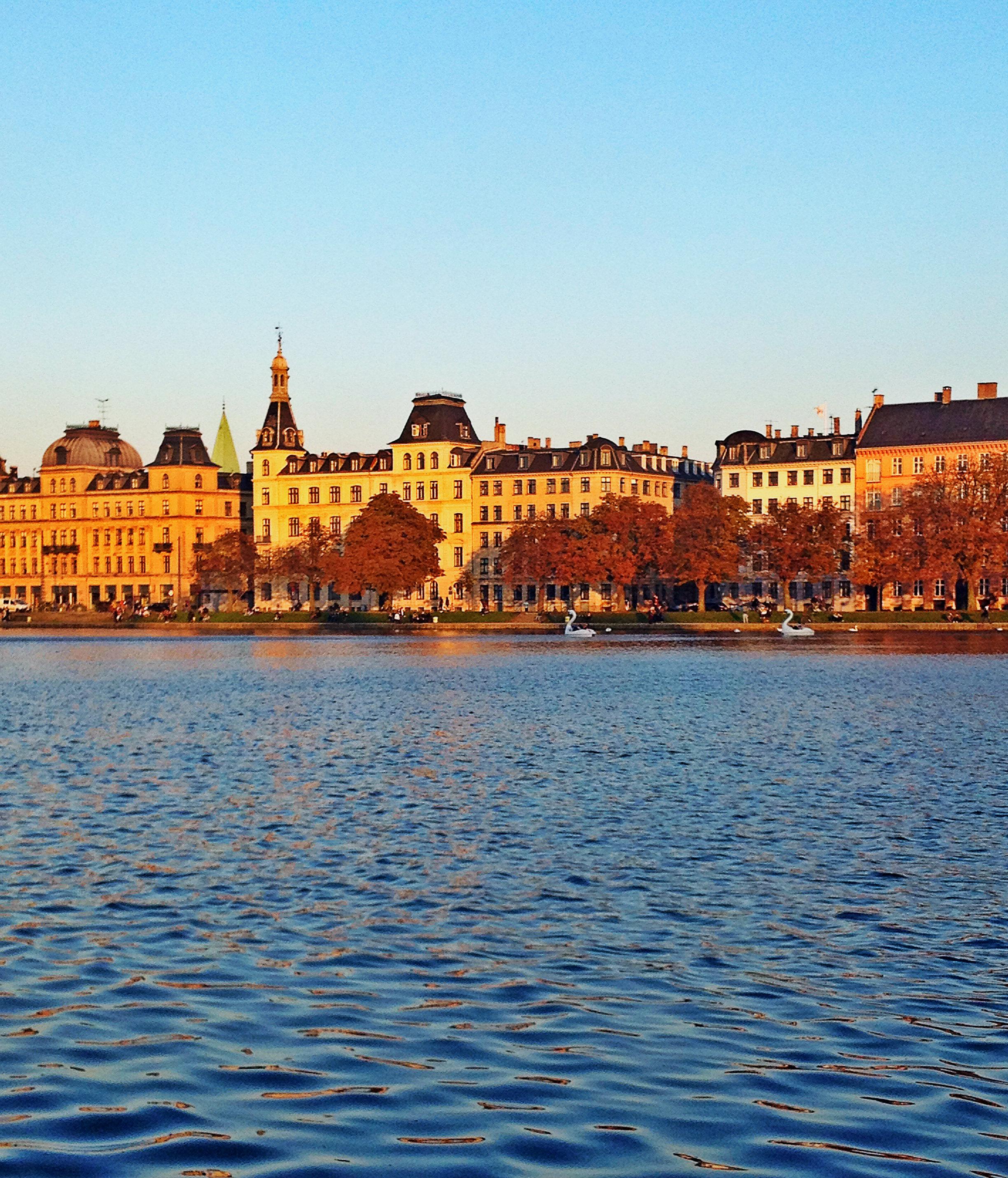 Autumn Copenhagen Canal | Tall Girl Meets World