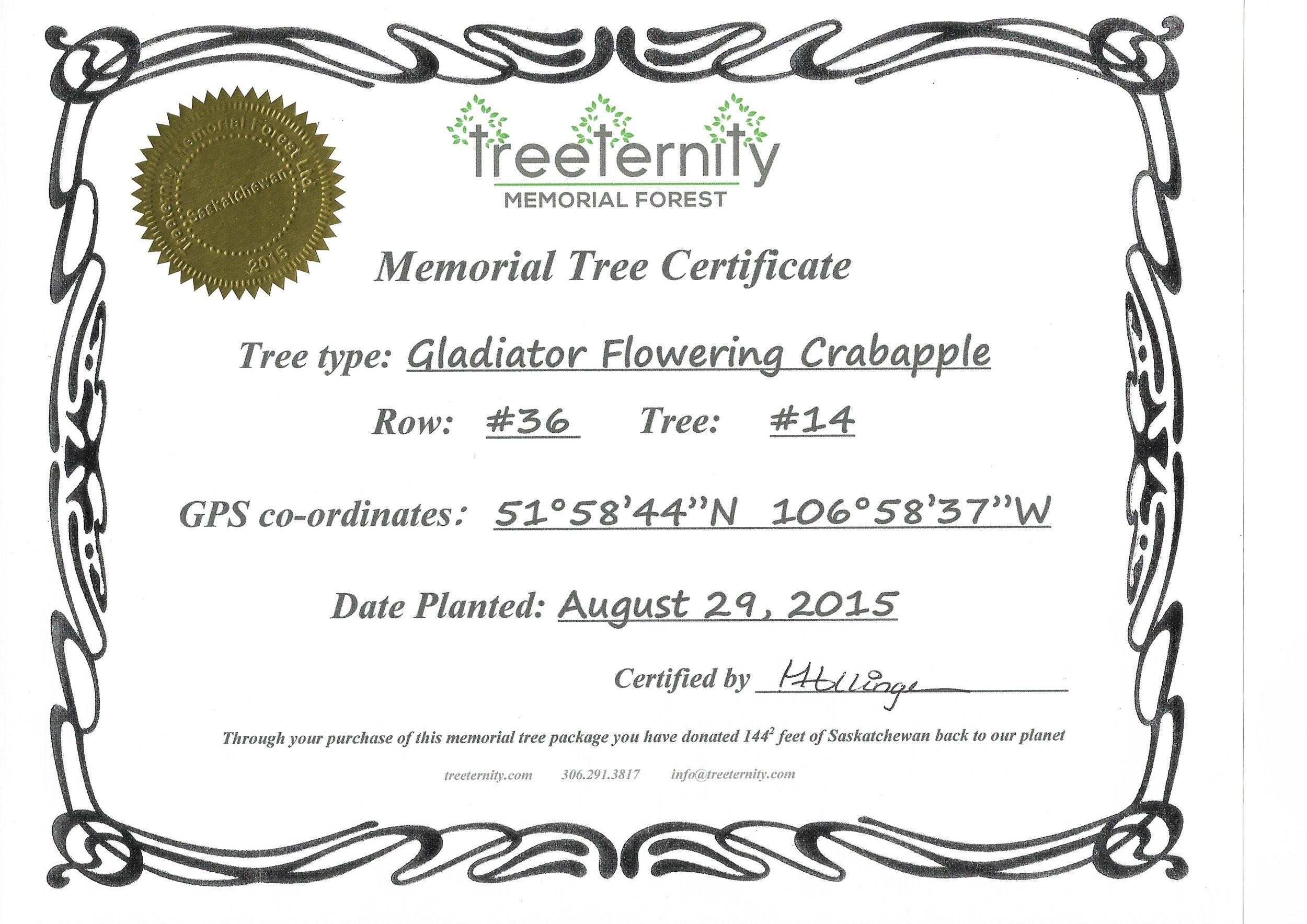 Treeternity Keepsake Certificate