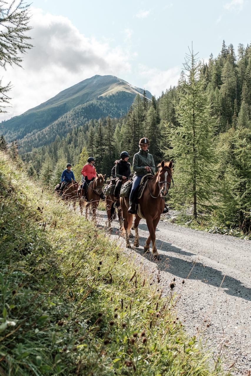 """""""Mein Herz und mein Gemüt sind prall gefüllt - mit wunderschönen Erinnerungen an unseren Wanderreiten & Yoga-Retreat, meine Seele ist gerührt von der einmaligen Landschaft, den Pferden und den Begegnungen. Ich bin tief dankbar dafür und blendend erholt in die neue Woche gepurzelt."""""""