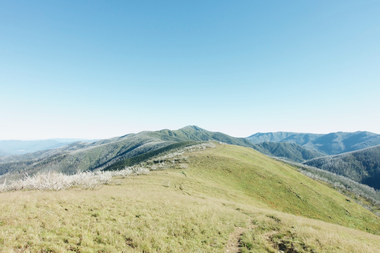 Looking back over the Razorback Ridge towards Mt Feathertop, where I had spent the night.
