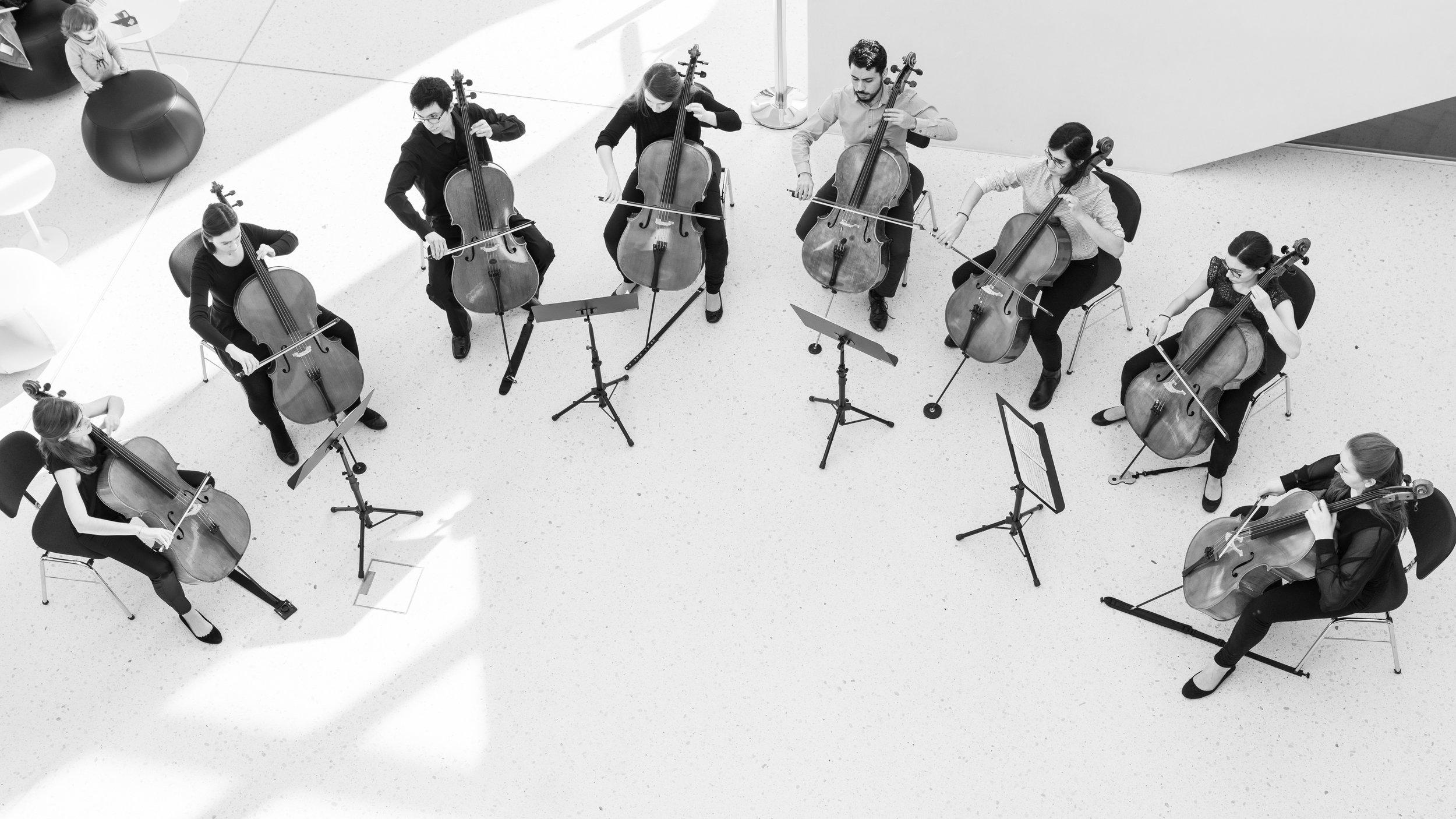 Konzert am Mittag - Cello20180206_029-036-2.jpg