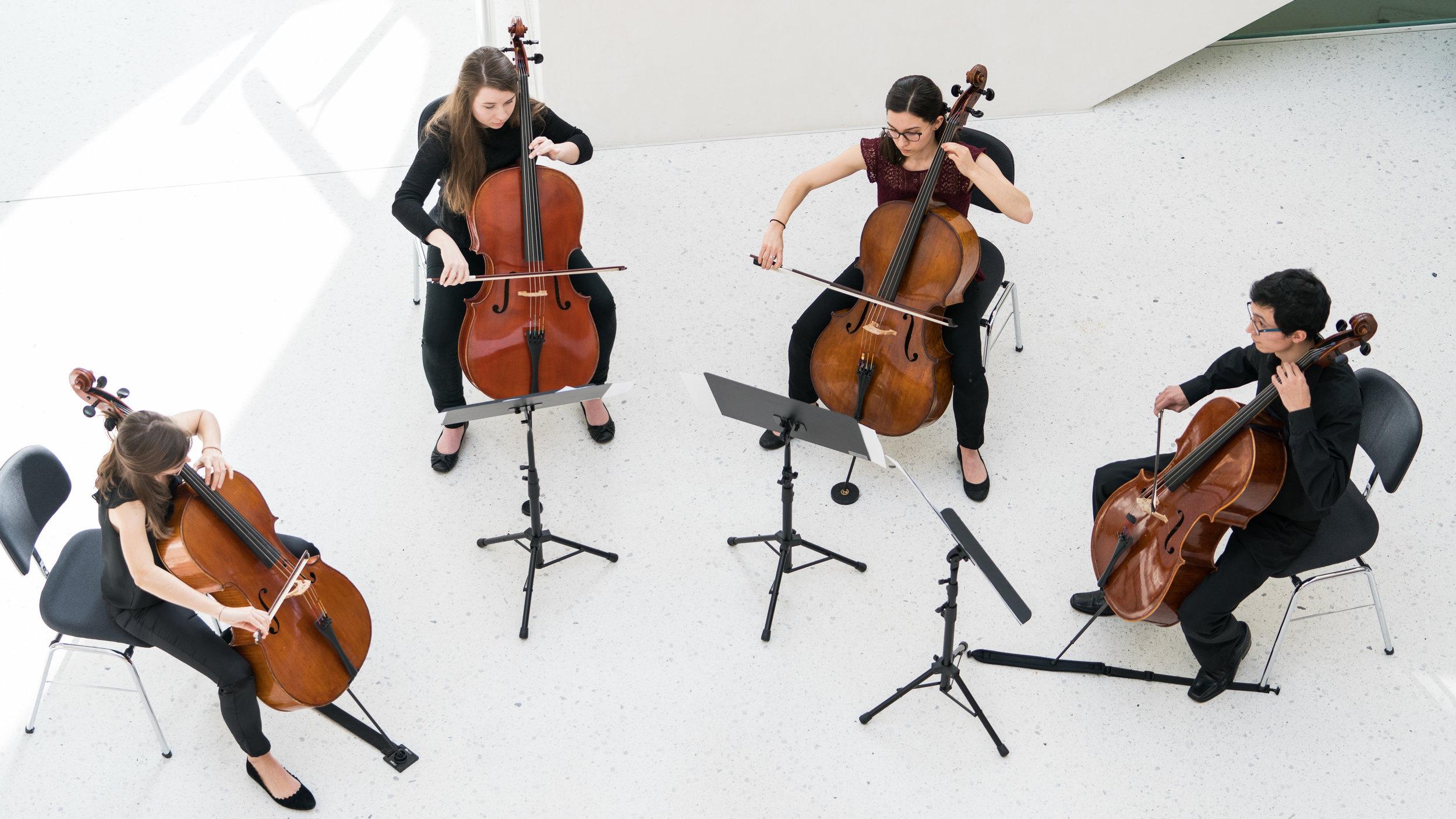 Konzert am Mittag - Cello20180206_019-036.jpg