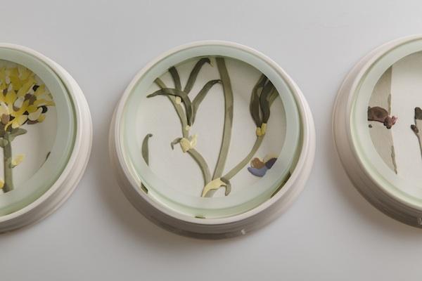 Herbarium Dishes - Swainsona copy.jpg