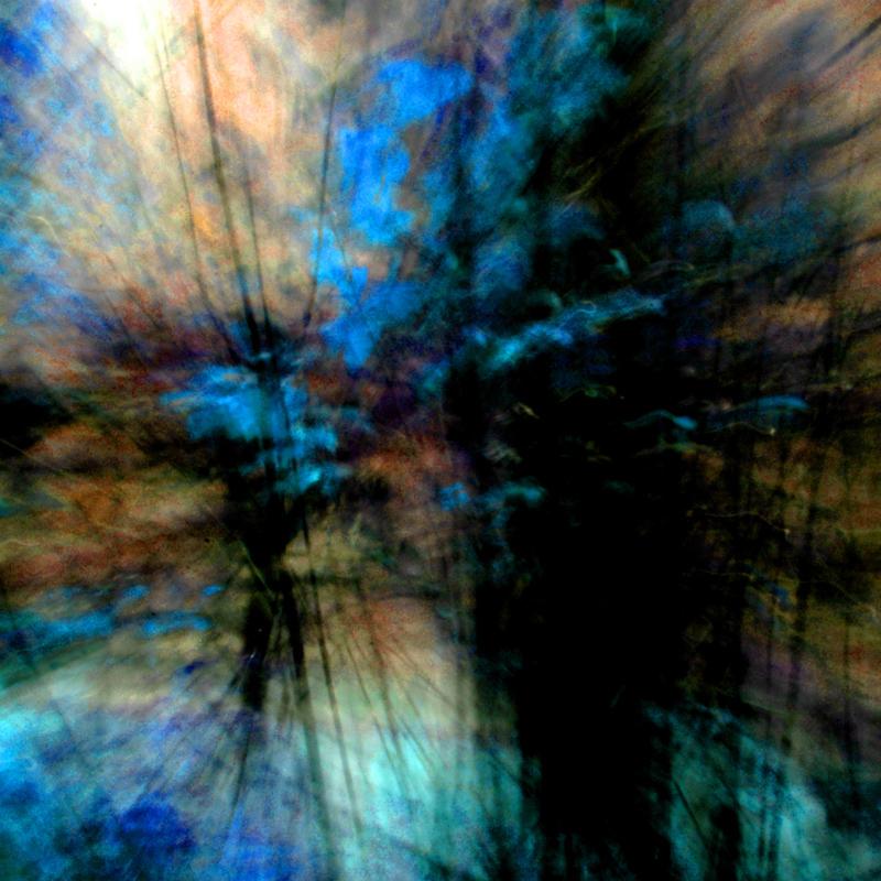 NK metsa blue.jpg
