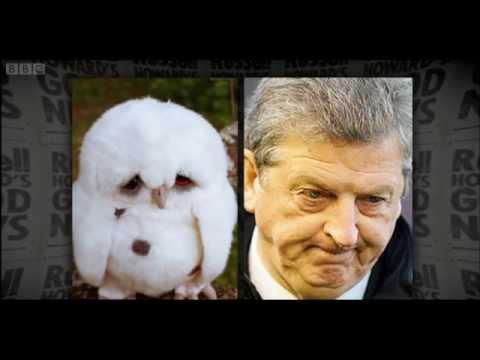 owl roy3.jpg