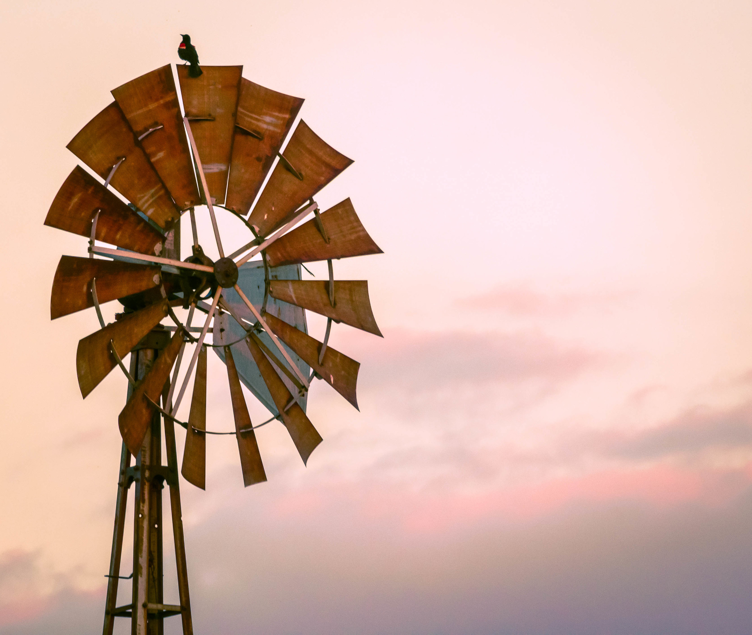 oklahoma piedmont windmill