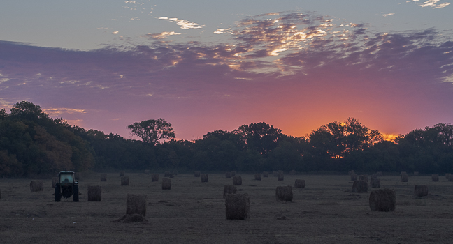 oklahoma farmscape.jpg