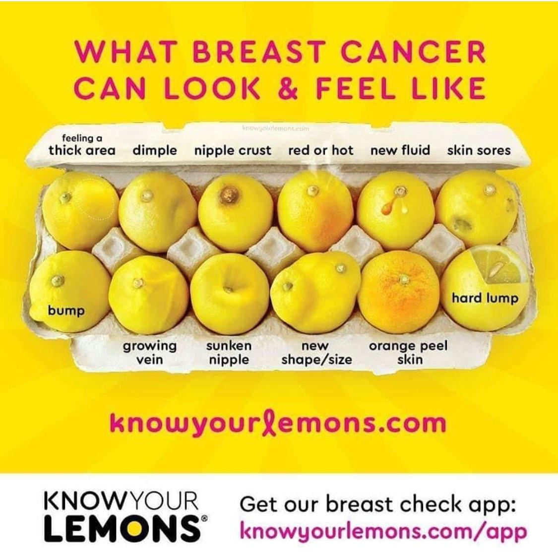 Know Your Lemons Trina Lee