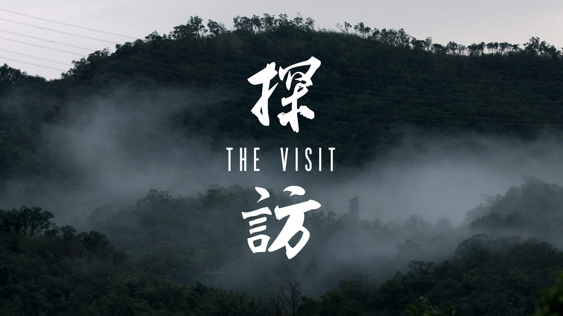 the-visit-poster.jpg