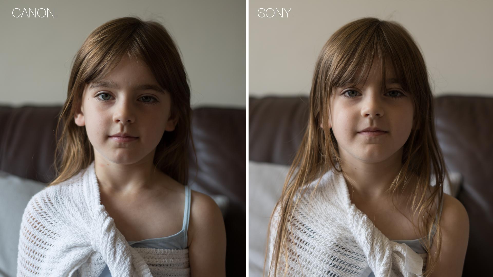 Canon vs Sony comparison 1