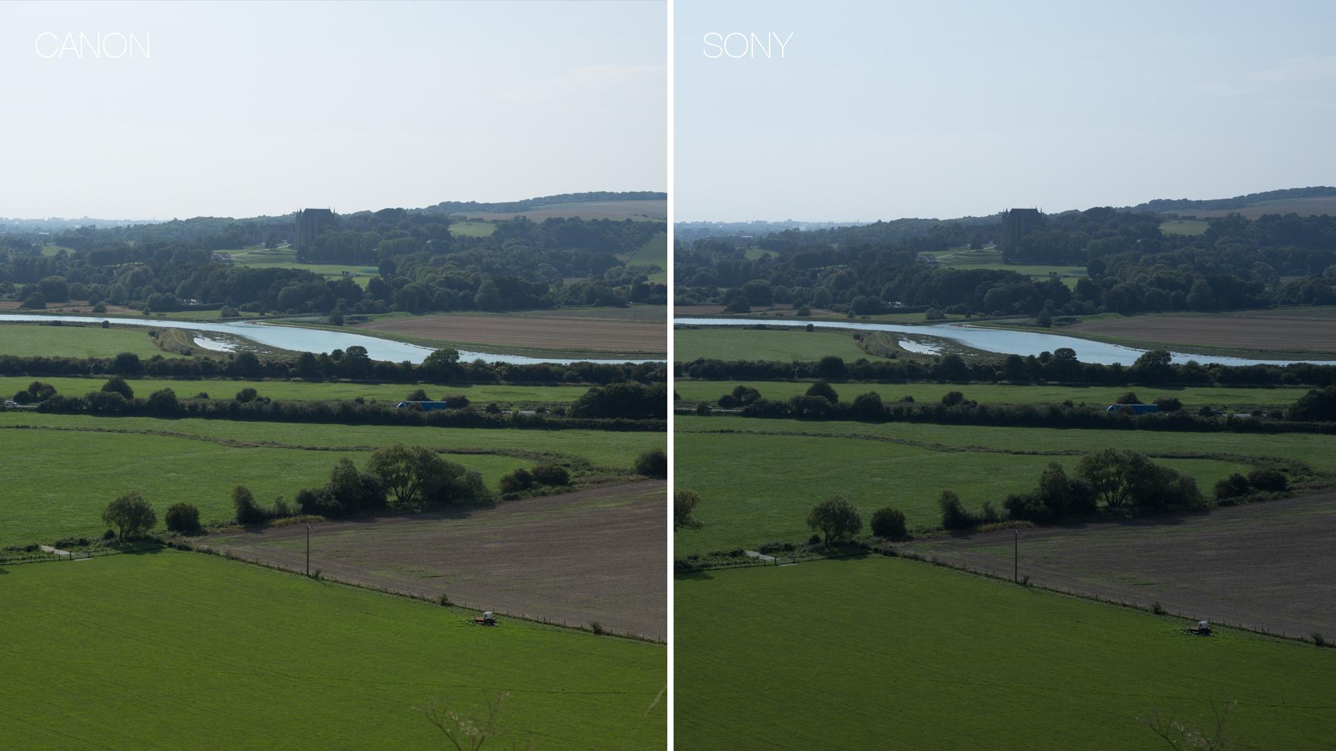 Canon vs Sony comparison 3