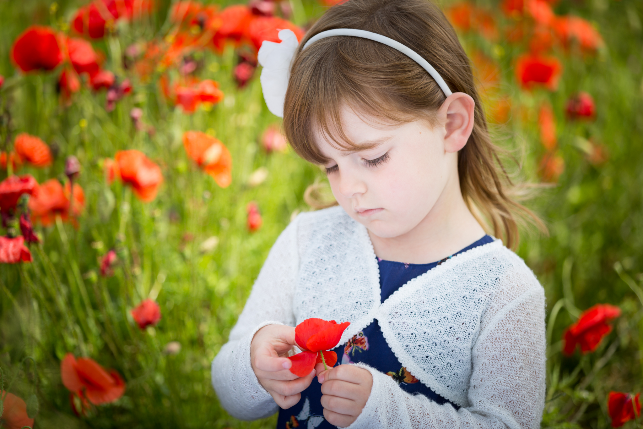 Portrait shot using natural light and a reflector. The poppies are less saturated as the exposure has been lifted.