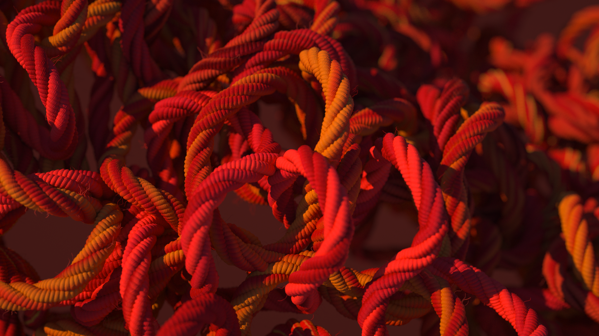 Knit_009_0025.png