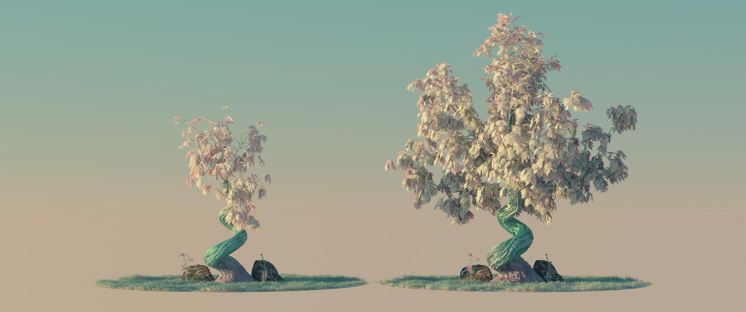 trees_3.jpg