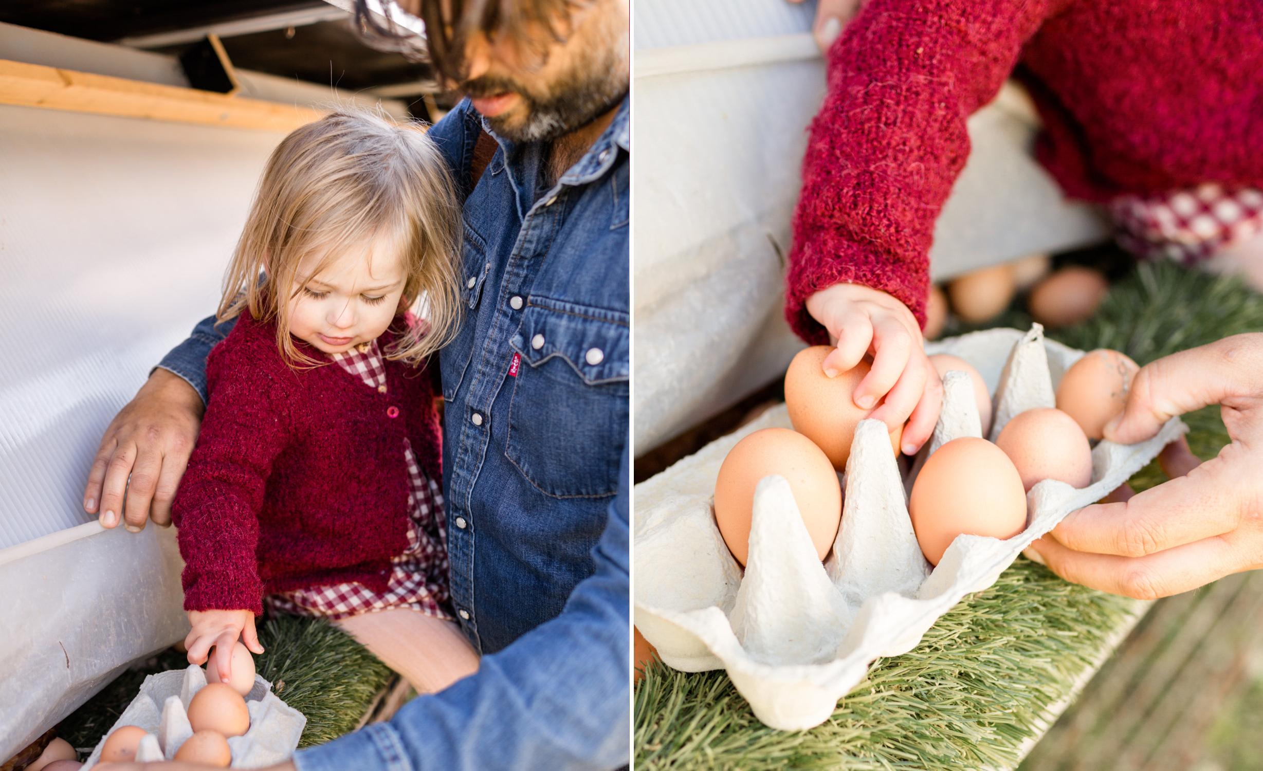 egg-merge.jpg