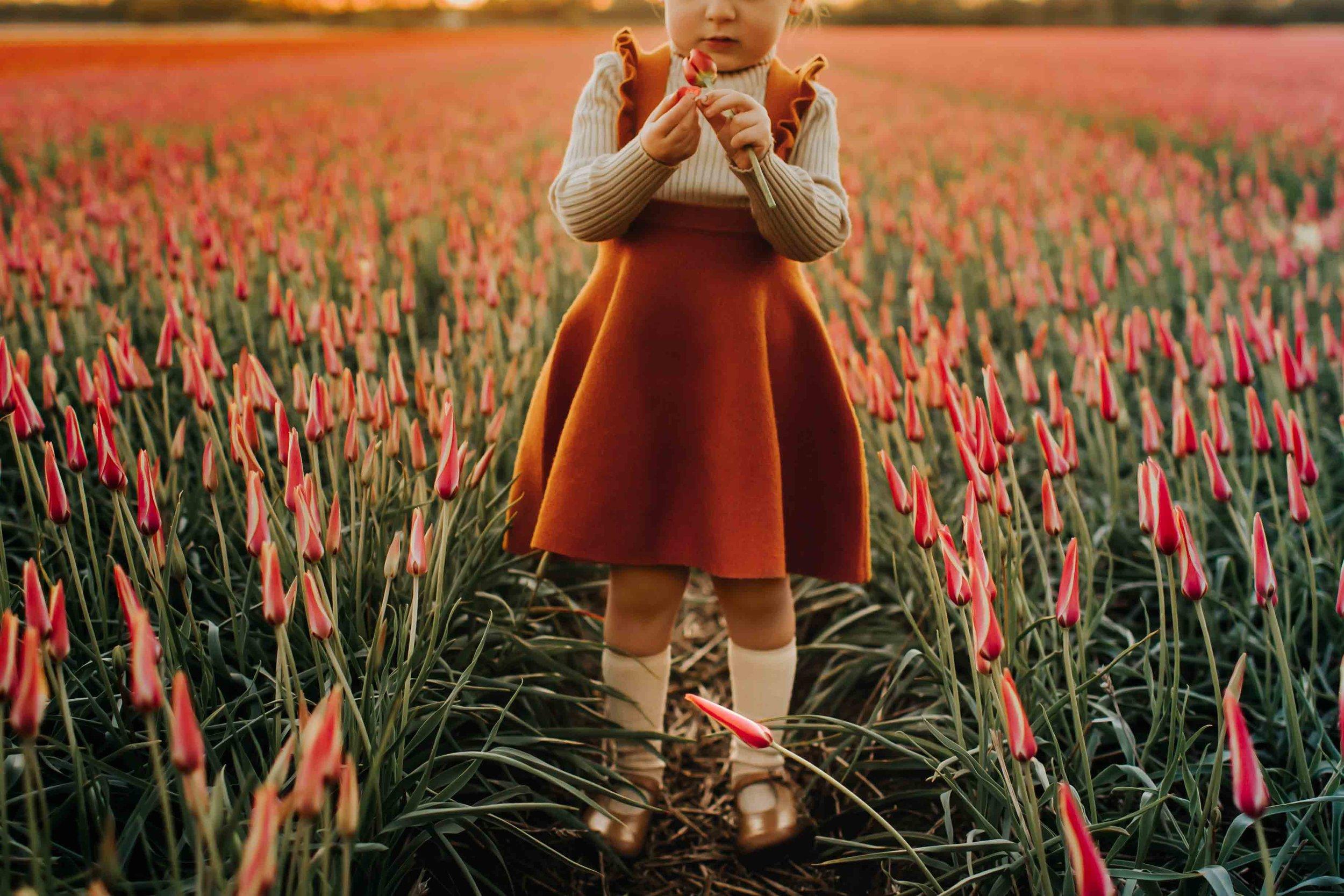 Darcy-Tulips-2018.jpg