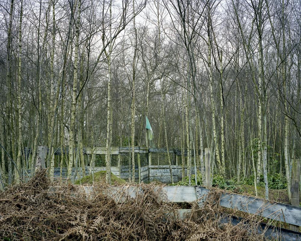 Holmbush 250308001.jpg