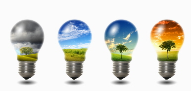2016410-light-bulb-with-nature.jpg