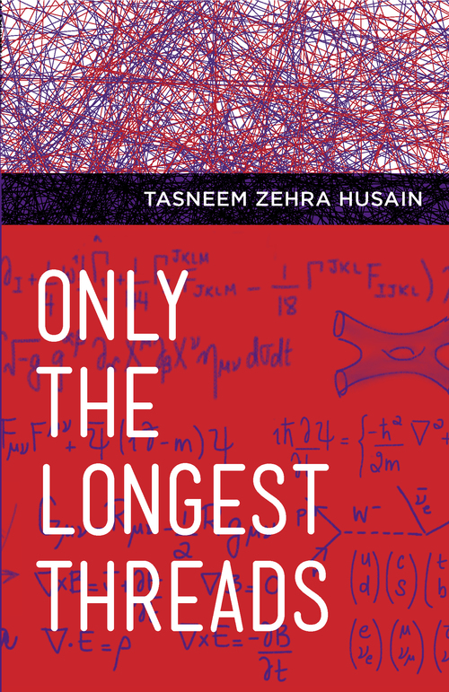 'A fictional approach to physics that captures both the substance of the theory and the passion of its practitioners' –  Kirkus Reviews