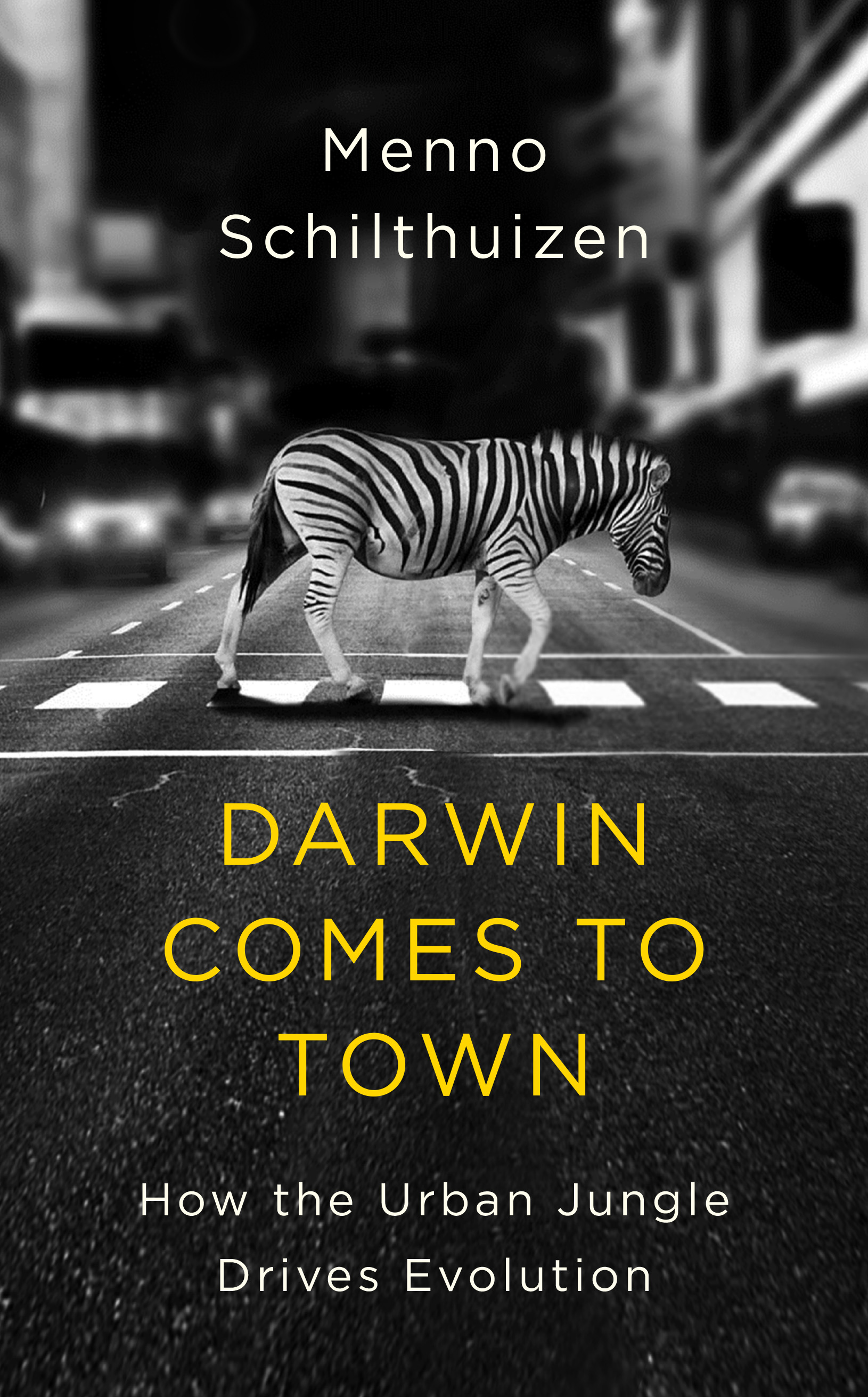 darwin comes to town 5-2.jpg