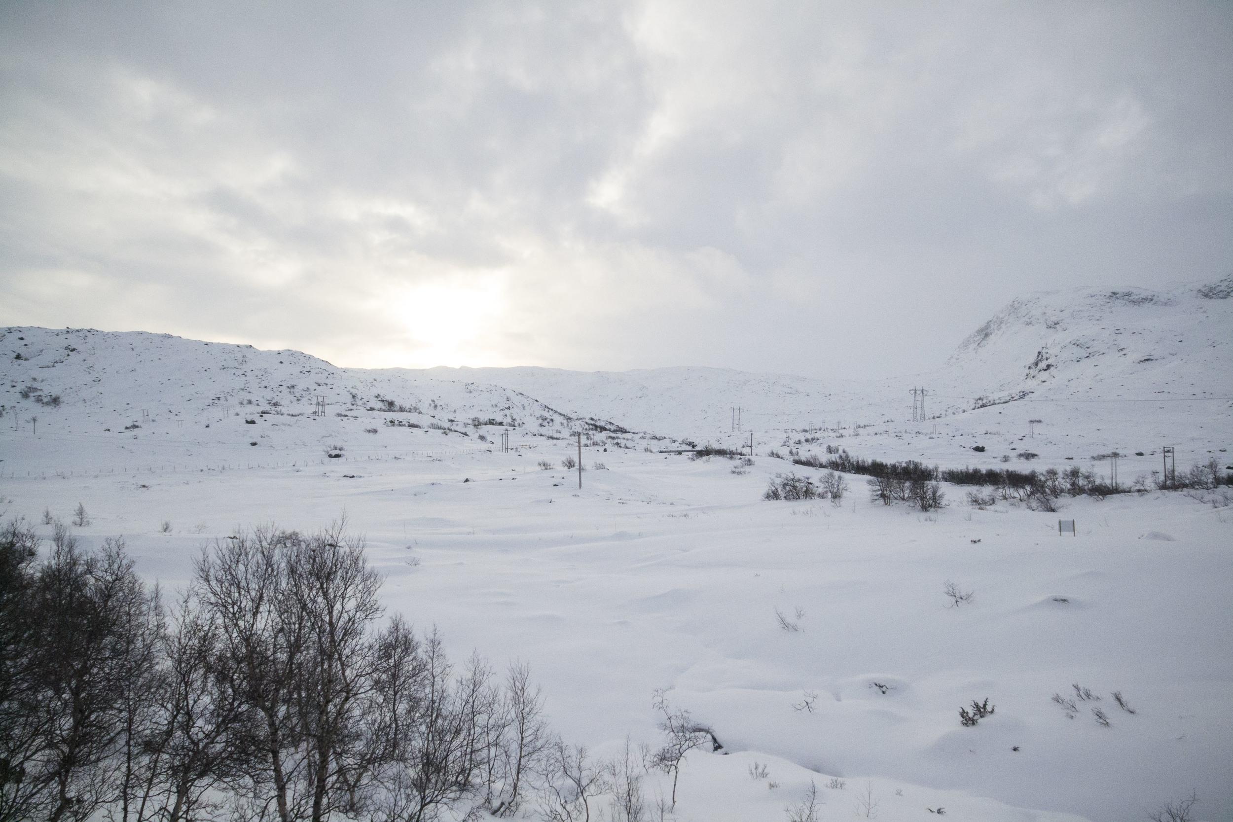 Norwegian Fjords_151202_0011.JPG