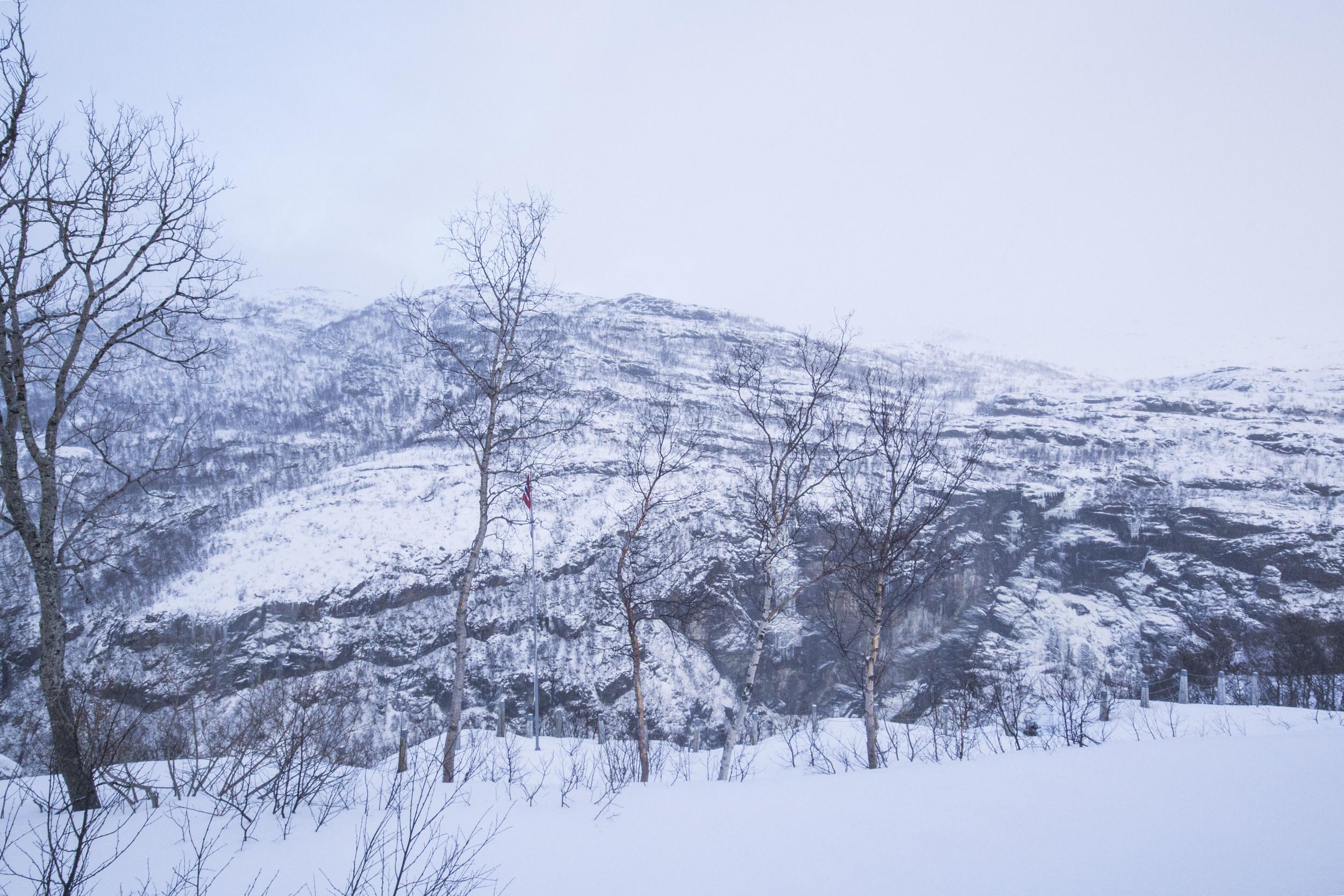 Norwegian Fjords_151202_0020.JPG