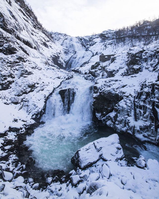 I have been fortunate enough to experience so many surreal experiences during my travels, but seeing the #fjords and waterfalls in #Flam were just a whole different level. Can't believe how beautiful the photos turned out, and so grateful for the snowcapped mountains that greeted us. Full set of photos at the link in bio! #1Month2Wander #wanderlust #onwards #solotravel #norwayinanutshell