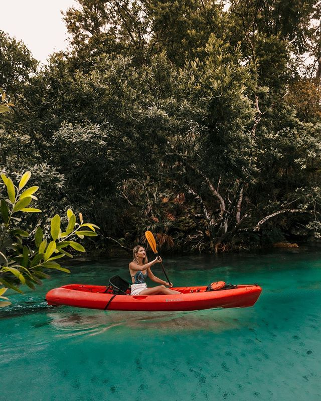 Rowing down a glowing river straight out of the Jungle Book. The coolest part was the manatees swimming below us 🍃. Swipe to see a video of @isaacsjohnston finding a huge tree to jump out of 🐒.
