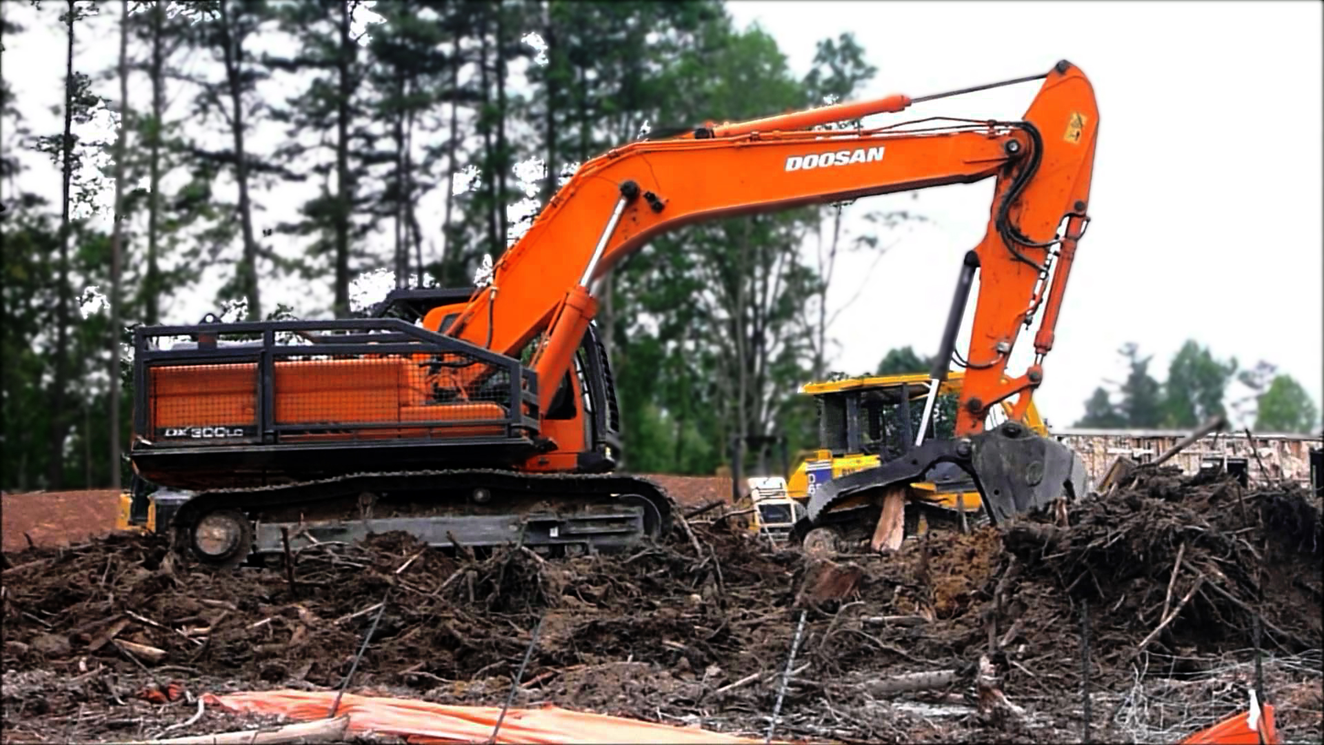 Landclearing2.jpg