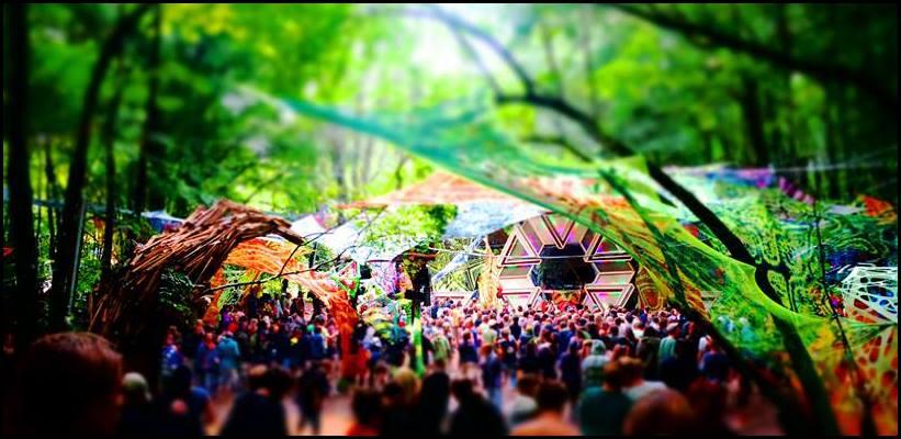 psy festival 1.jpg