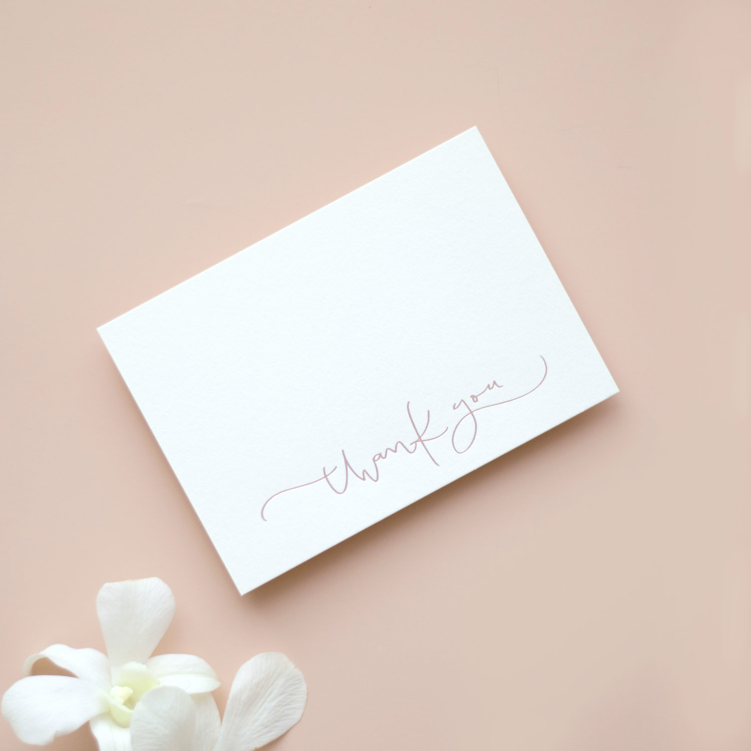 papelnco-thank-you-cards-collection.jpg