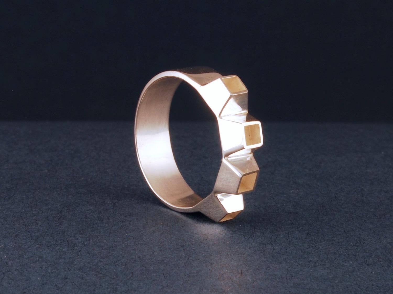 sprocket ring