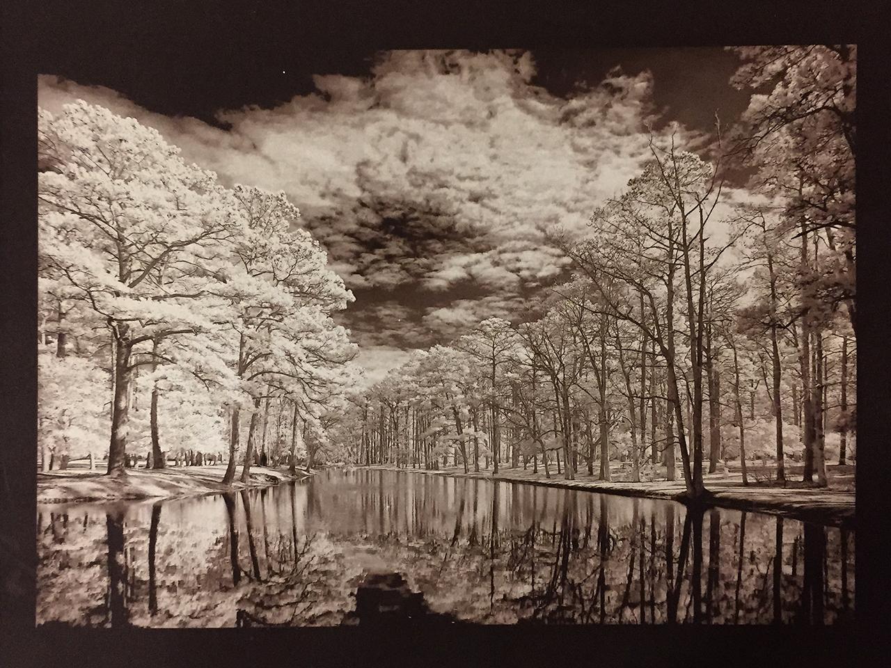vdb-oak-reflections-in-infrared-3-min-exp.jpg