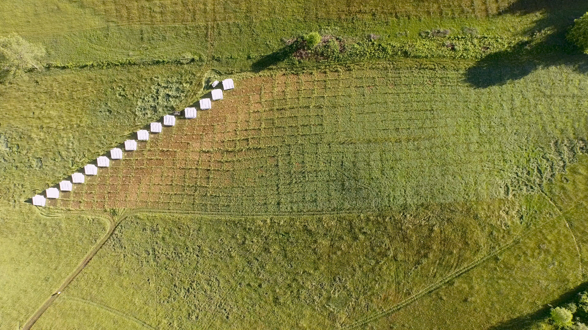 An aerial view of the pasture shelters reveals part of the inspiration for the name of our brand  Pasture Patterns.   Pasturing also creates a pattern of life that must blend and adjust to the changes between and within each season.
