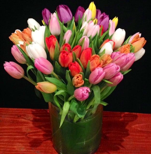 Mix Tulips (60 stems)