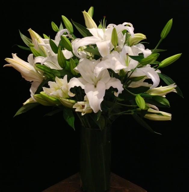 Two Dozen White Lilies