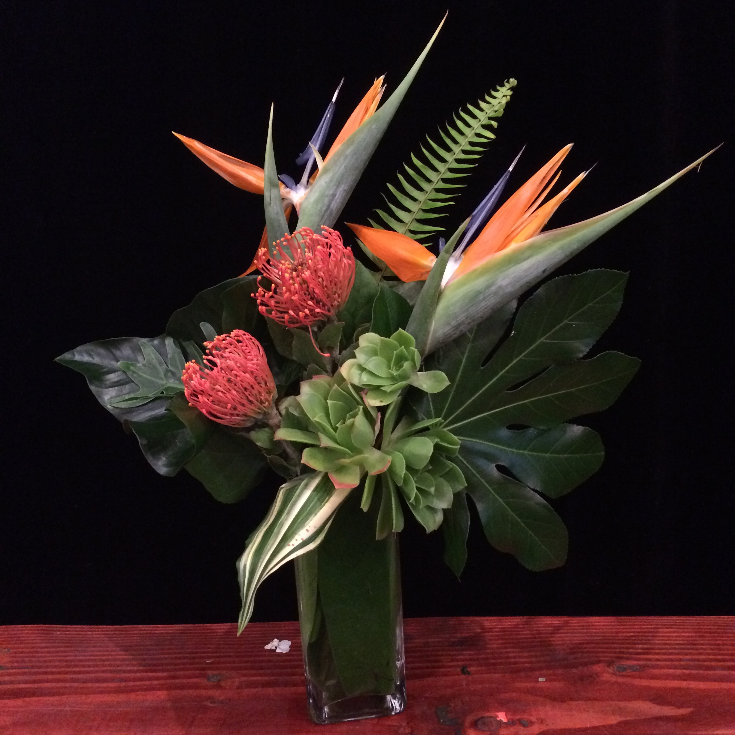 Birds of Paradise, Orange Pincushion, Green succulents with Mix Leaves