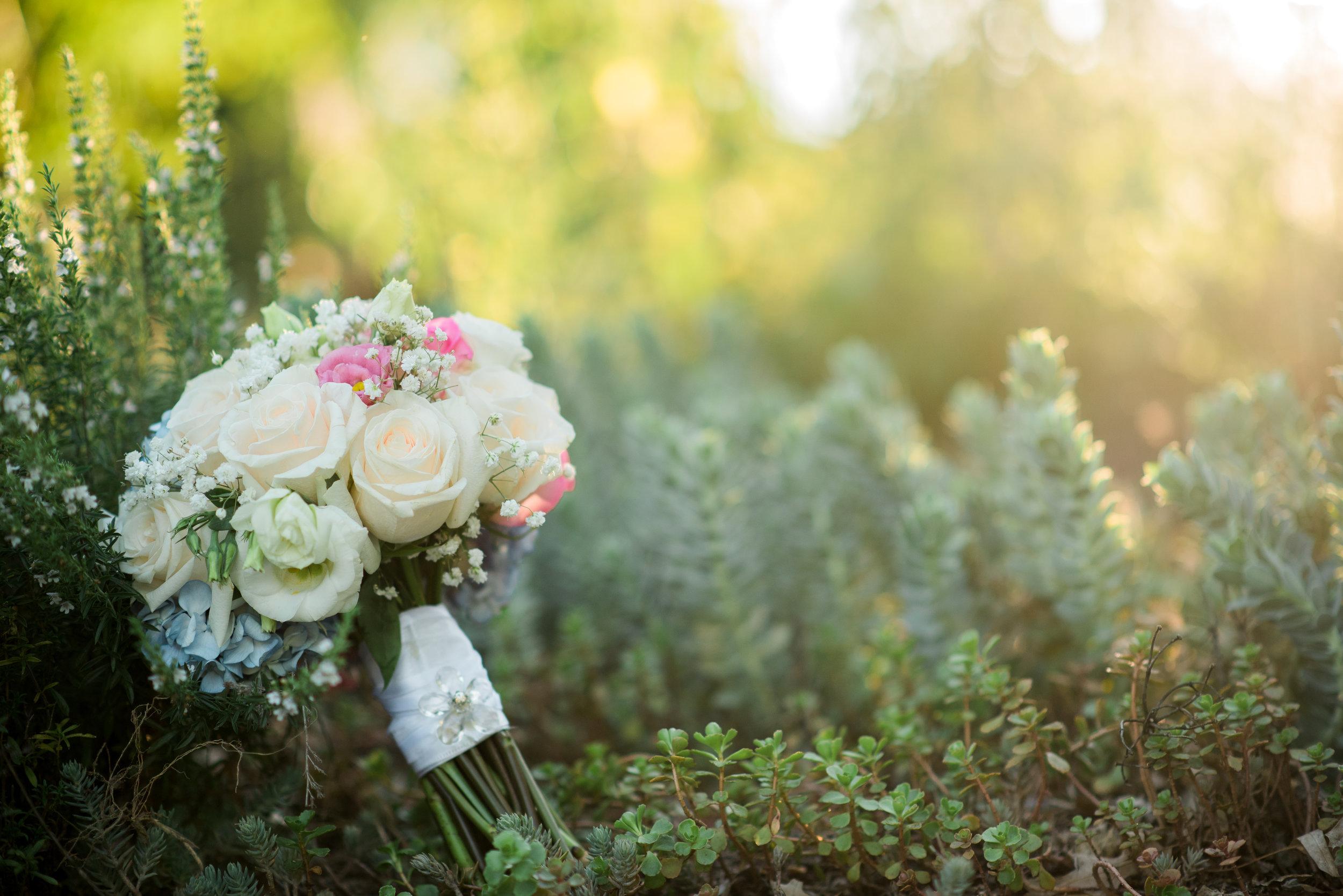 Pennsylvania Wedding Photographer
