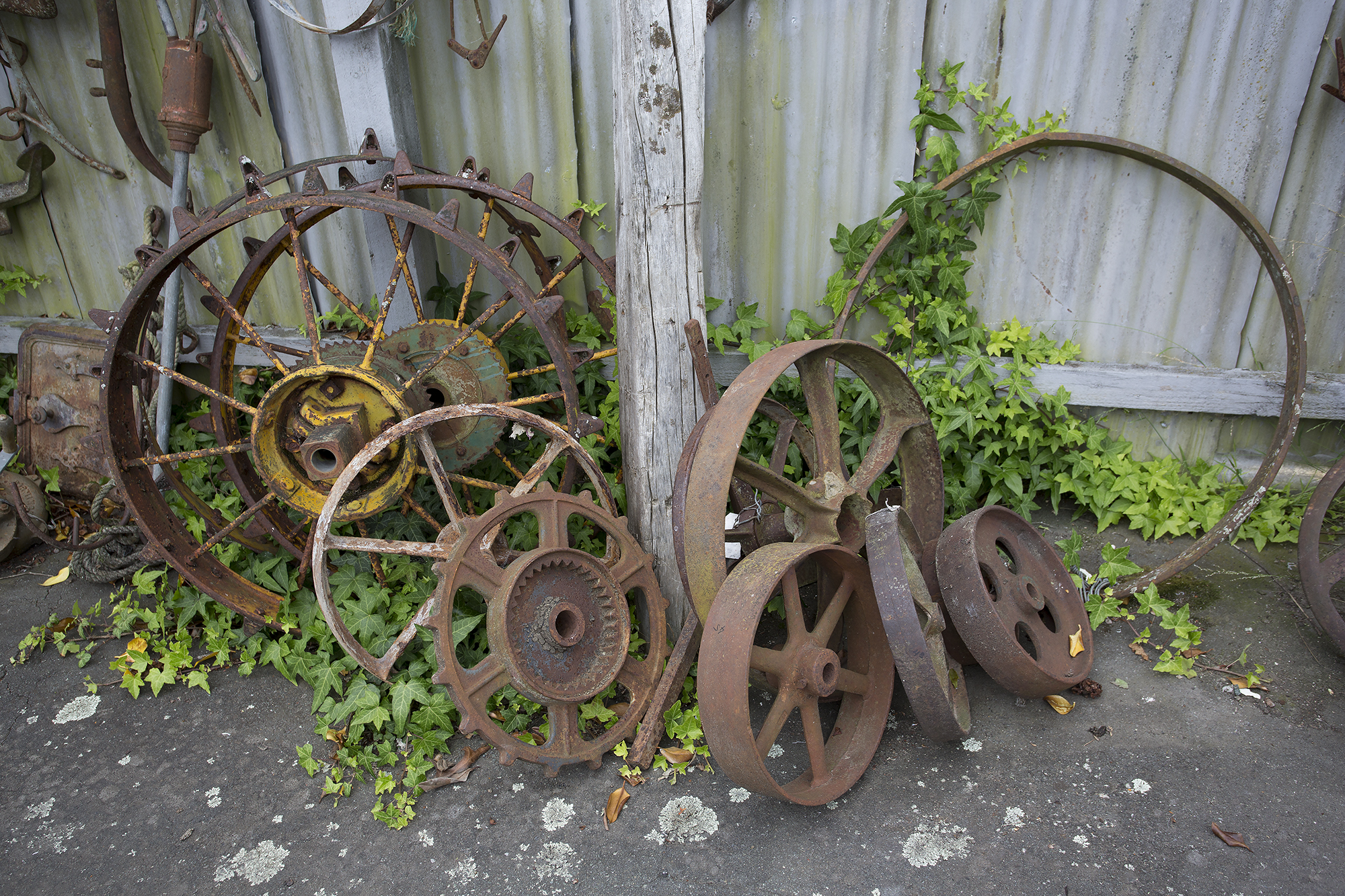 All that remains are the wheels covered in ivy. Where did the vehicles that were attach to them drive? who drove them? so many questions will remain unanswered, a great place to spur the imagination.