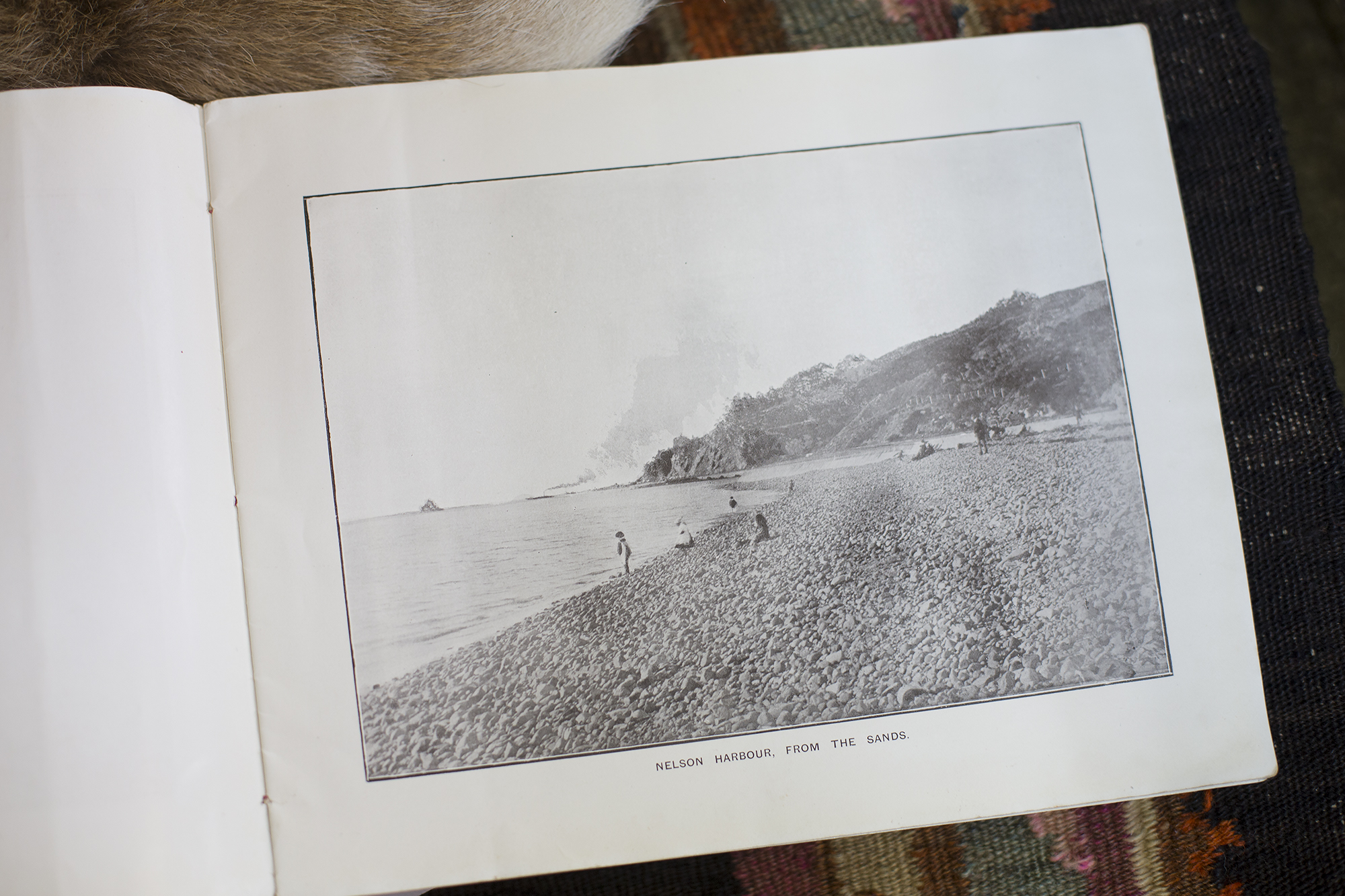 "Richmond Antiques should be your first stop if you are interested in Nelson history, they have a range of books on the area with amazing photographs. Here is one of Nelson harbour from ""The Sands"" (Tahuna Beach)"
