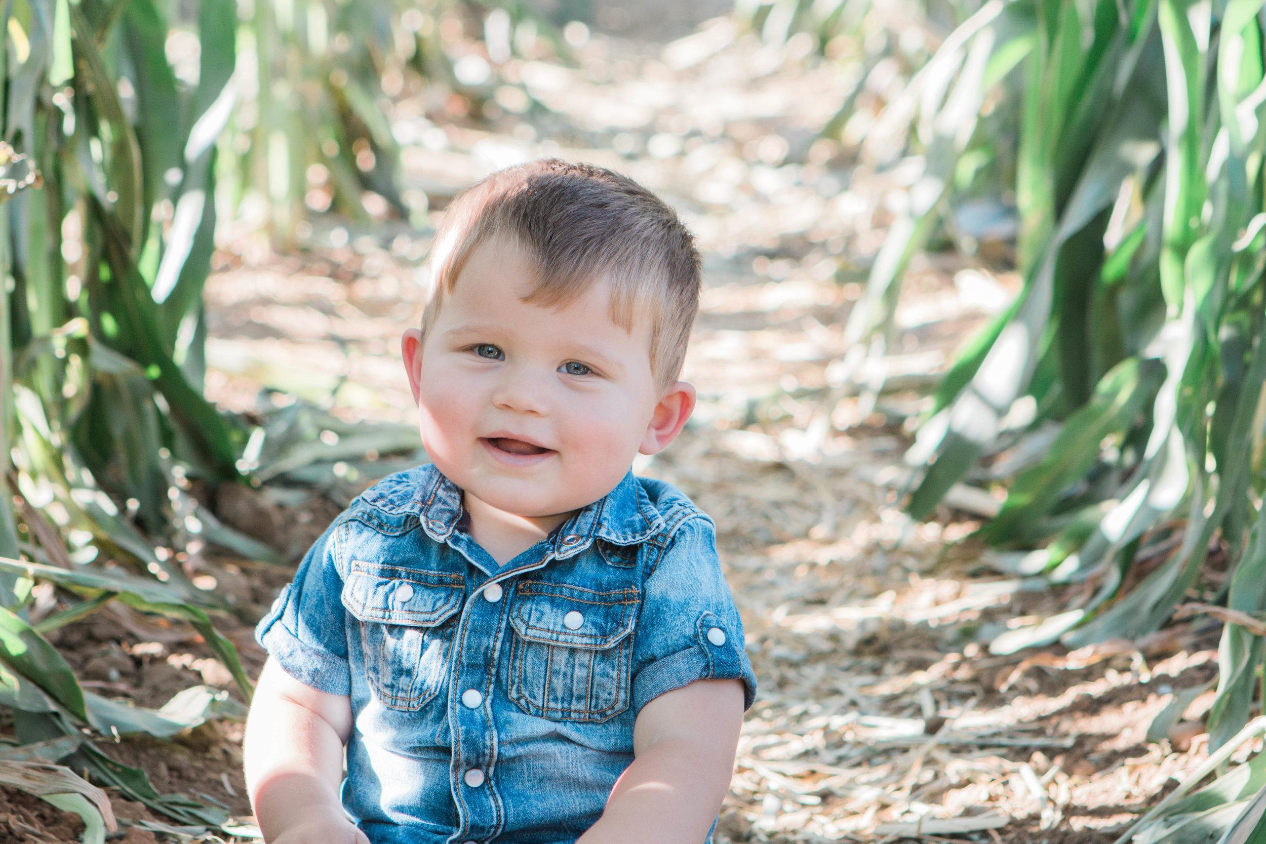 18 months old |October 2015
