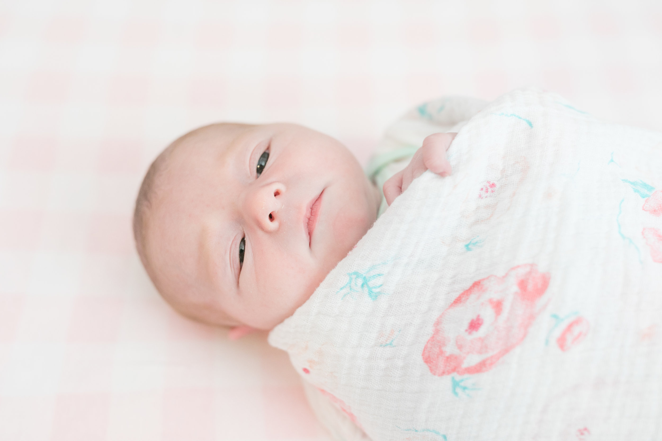 2019_newborn_ellie-blog-25.jpg