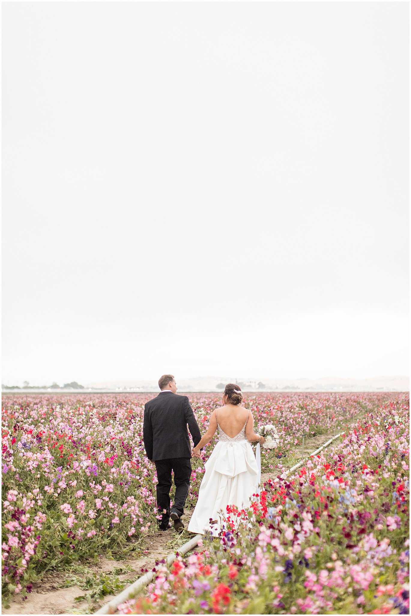 2019 wedding san juan bautista hacienda de leal vineyards bay area wedding photographer_0084.jpg