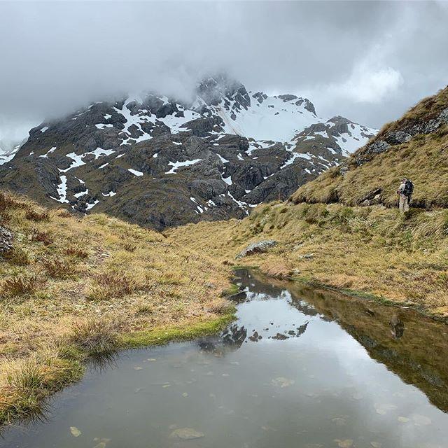 Routeburn Track | New Zealand, December 2018  #routeburntrack #newzealand #newzealandvacations #southisland #travel #nature #hike #hiker #hiking #trail #optoutside #mountains #naturephotography #naturelovers #nature_good #outdoors #environment #photography #newzealandpics #newzealandtravel #naturephotographer