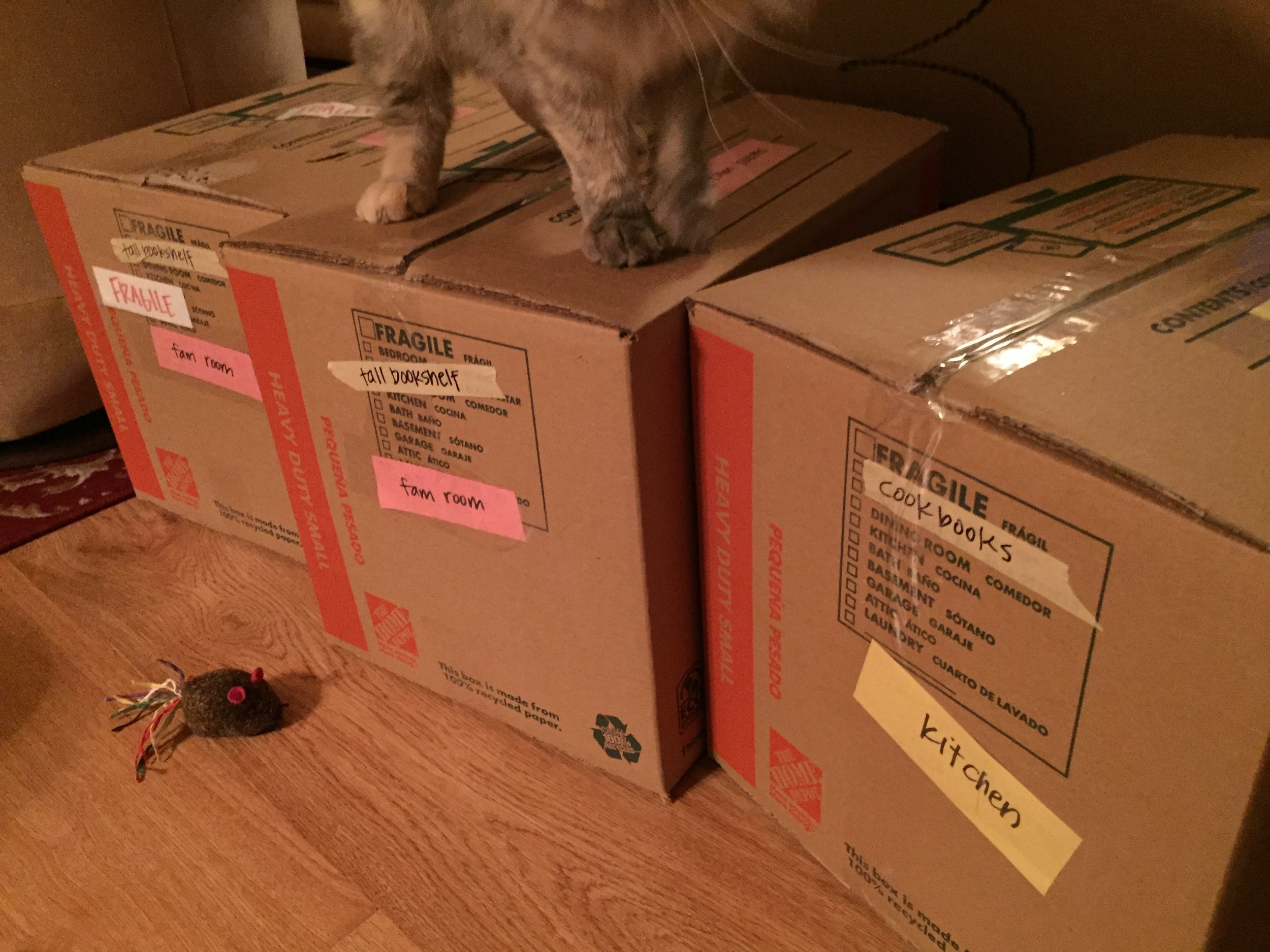Color-coding in progress. (Did I mention we have another kitty who demands constant attention. We see you Stella.)