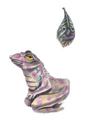 mini frog 72.jpg