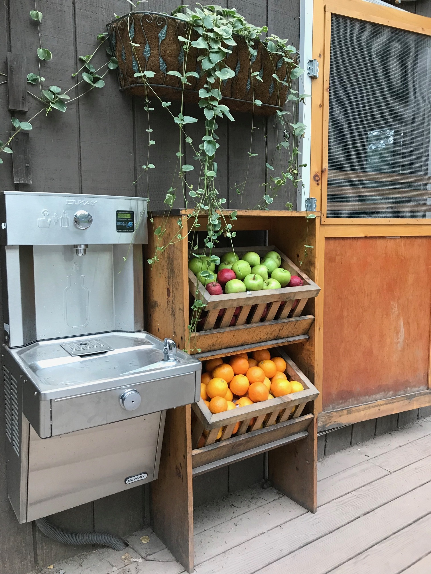"Check out the ""vending machine:"" Free water + fruit!"
