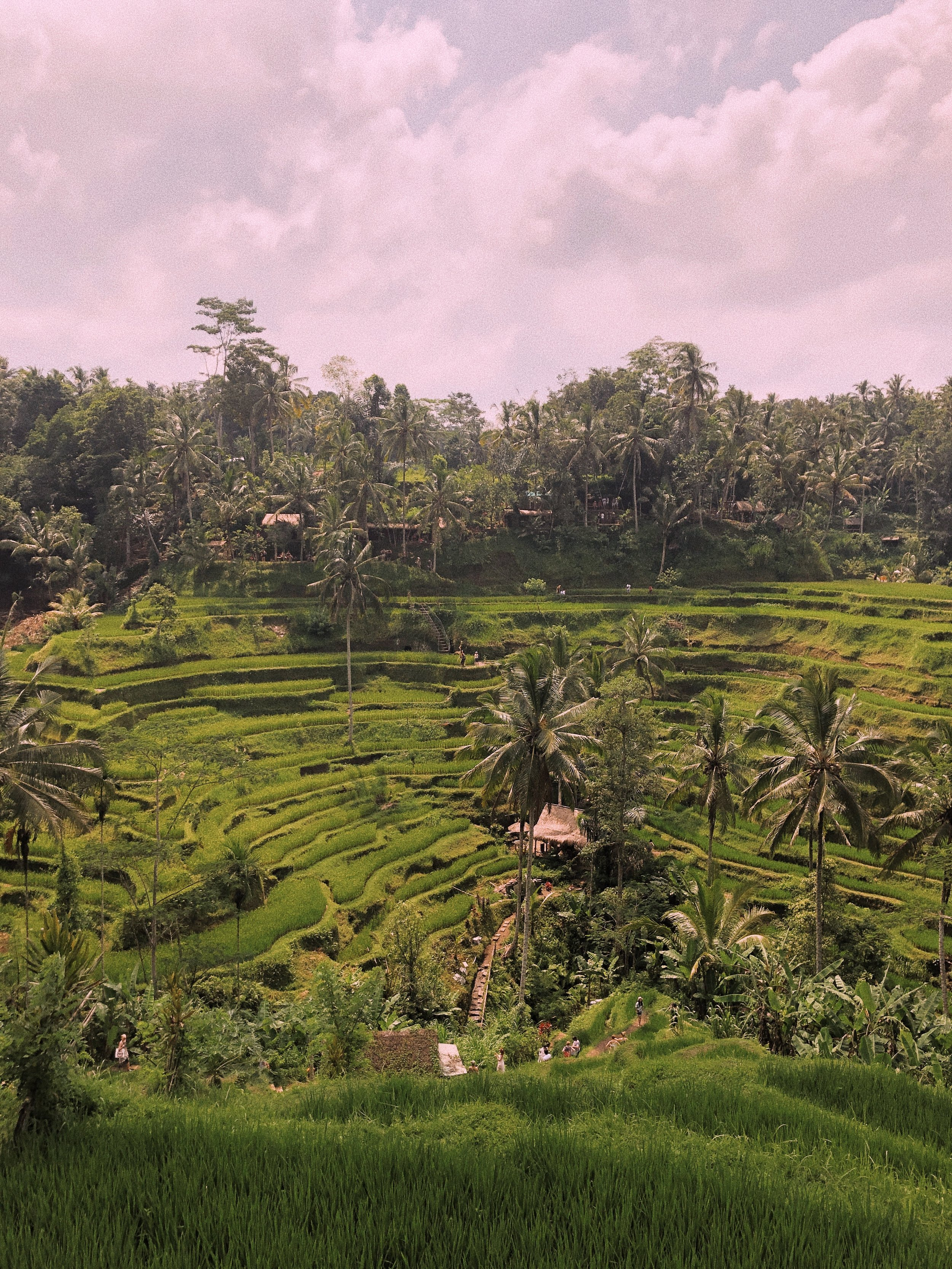 Bali Travel Guide - Amour Ophelia