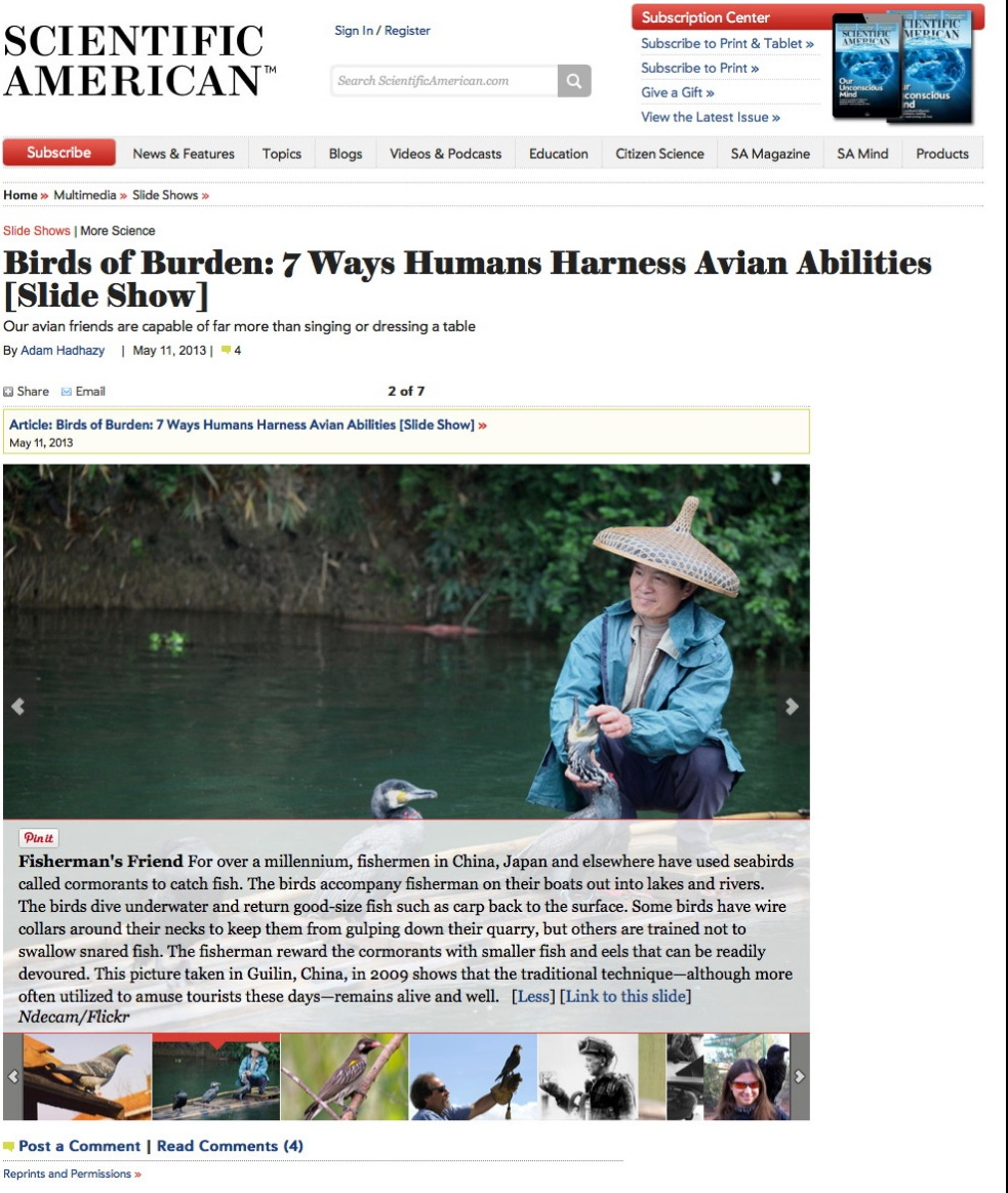 Published: May 11, 2013  http://www.scientificamerican.com/slideshow.cfm?id=how-humans-put-birds-to-work